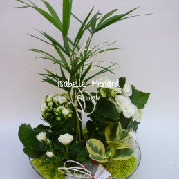 coupe de plantes blanches